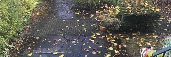 BGS-Reiniging.nl - Particuliere reiniging bestrating Den Bosch 1